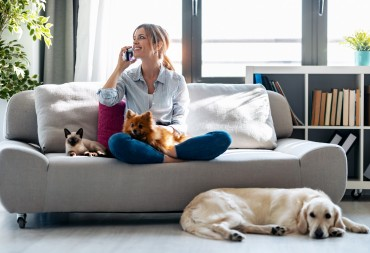 La casa Pet friendly: come tenerla pulita